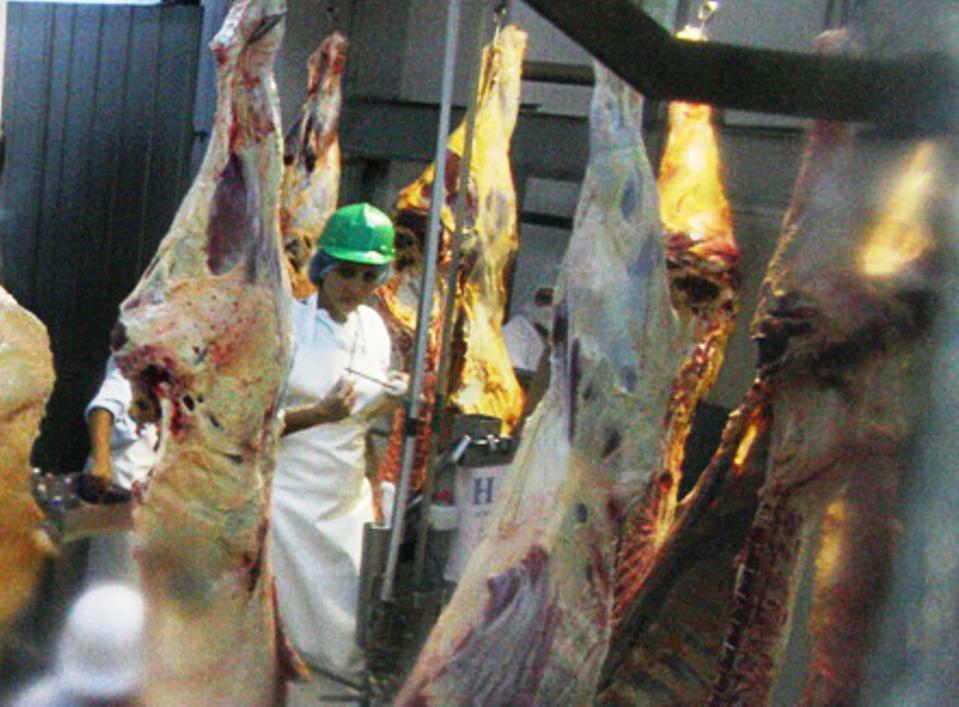 carne-de-exportacion-1