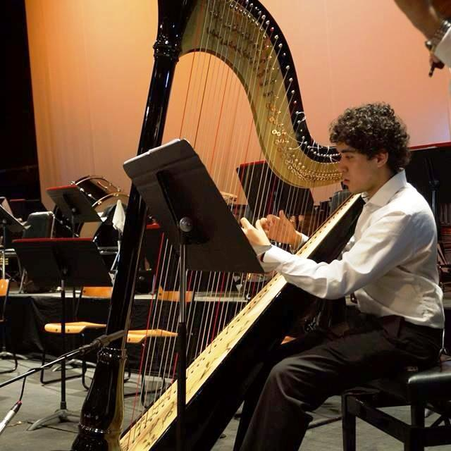 Joven artista ofrecer su primer recital de arpa cl sica for Casa piscitelli musica clasica