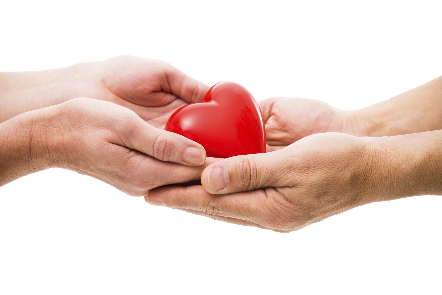Instituto de Previsión Social insta a la donación de órganos ...