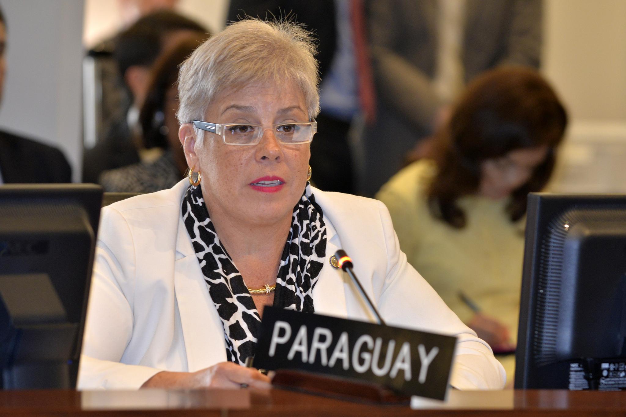 Resultado de imagen para REPRESENTAnte DE PARAGUAY EN LA OEA