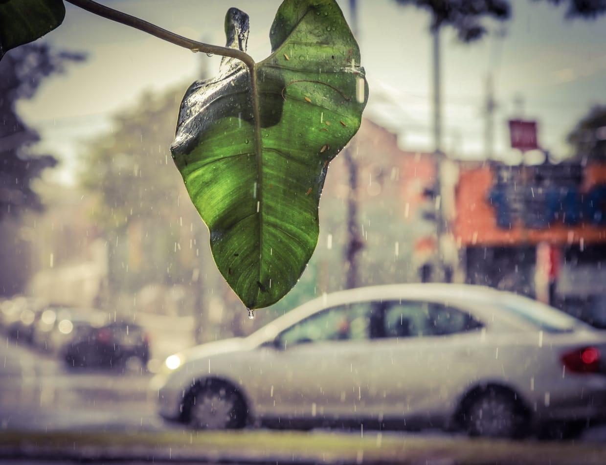 Meteorología anuncia una jornada cálida a calurosa con precipitaciones dispersas