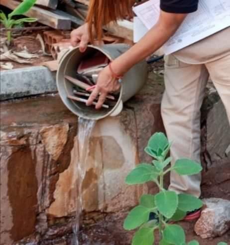 eliminación de criaderos de Aedes aegyti